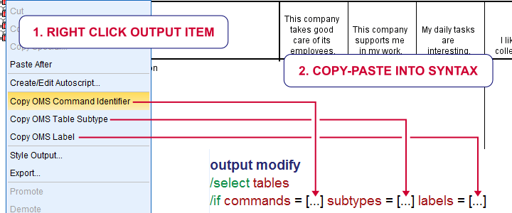 SPSS Copy Oms Command Identifier