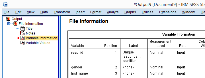 SPSS dictionary information as reported by running the DISPLAY DICTIONARY command.