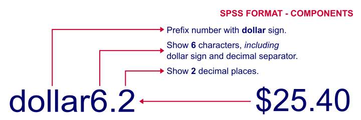 SPSS Variable Type versus Formats