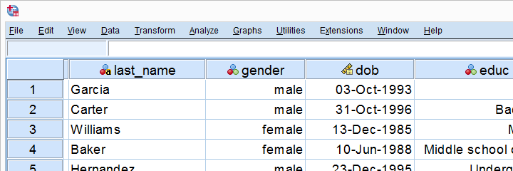 SPSS If Tutorial Data View