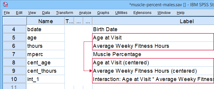 SPSS Mean Center Predictors Tool Variable View