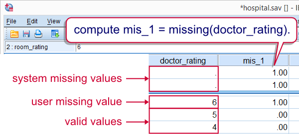 SPSS Missing Function Result