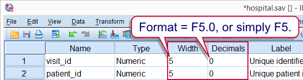 SPSS Numeric Variable Format under Variable View