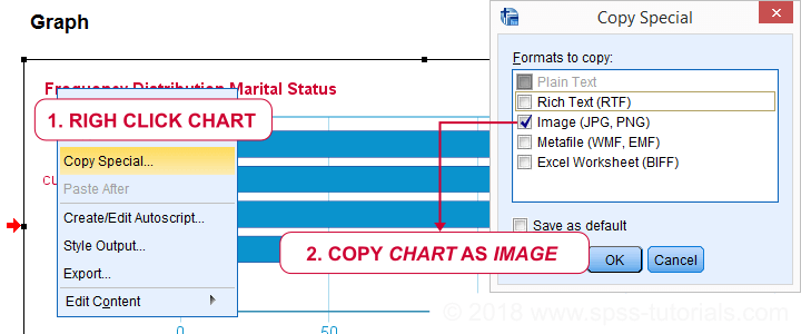 SPSS Output Chart Copy Special To WORD