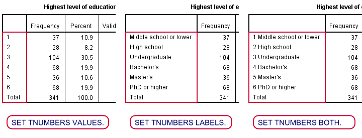 SPSS SET TNUMBERS Examples