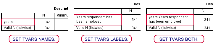 SPSS SET TVARS Examples