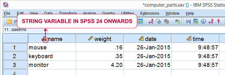 SPSS Variable Types and Formats as Icons in Variable Headers