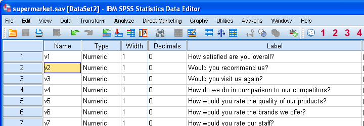 SPSS Variable View